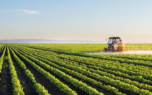 Noua politică agricolă comună. Ministrul Agriculturii a vorbit despre măsurile luate în România