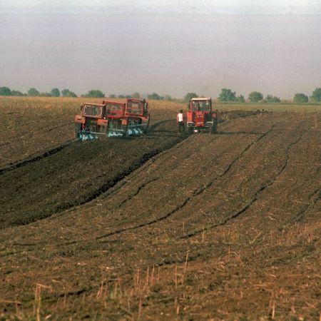 Realitate tot mai apăsătoare pentru agricultura din județul Dolj