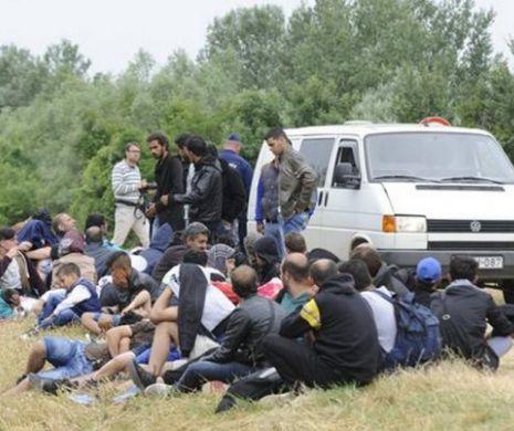 Comisarul european pentru extindere: cooperarea este necesara pentru a opri migratia ilegala