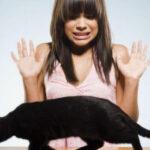 Cele mai ciudate superstiții la români. Tabu-uri despre umbrele, oglinzi sparte, sare și pisici negre