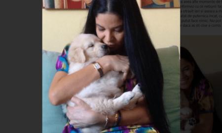 Câinele Annei Birchall a fost ucis. Detalii cutremurătoare: O minte bolnavă pusă pe răzbunări politice!