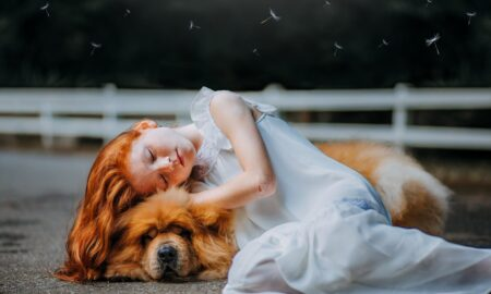 Moartea animalului de companie, la fel de grea ca a persoanelor dragi! Cum facem față durerii?