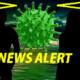 Coronavirusul, învins? Primul medicament cu anticorpi care poate salva vieți