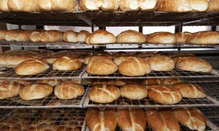 Avertismentul oamenilor de știință din România. 500 cazuri COVID pe zi de la pâinea neambalată