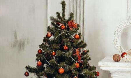 De ce este bine să pui zahăr și lămâie pe bradul de Crăciun. Rezultatul este de-a dreptul spectaculos!