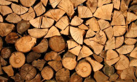 Industria lemnului a ajuns pe butuci. Scădere masivă a vânzărilor, pe fondul pandemiei cu noul coronavirus