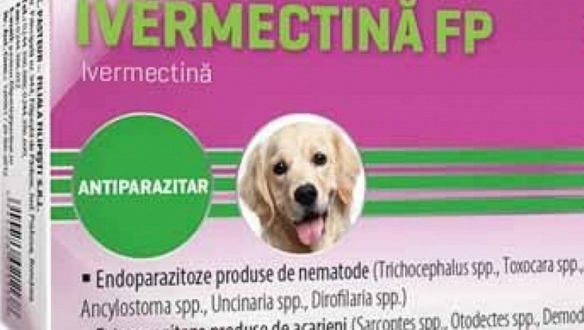 Medicii veterinari, avertizare despre medicamentele care conțin ivermectină!