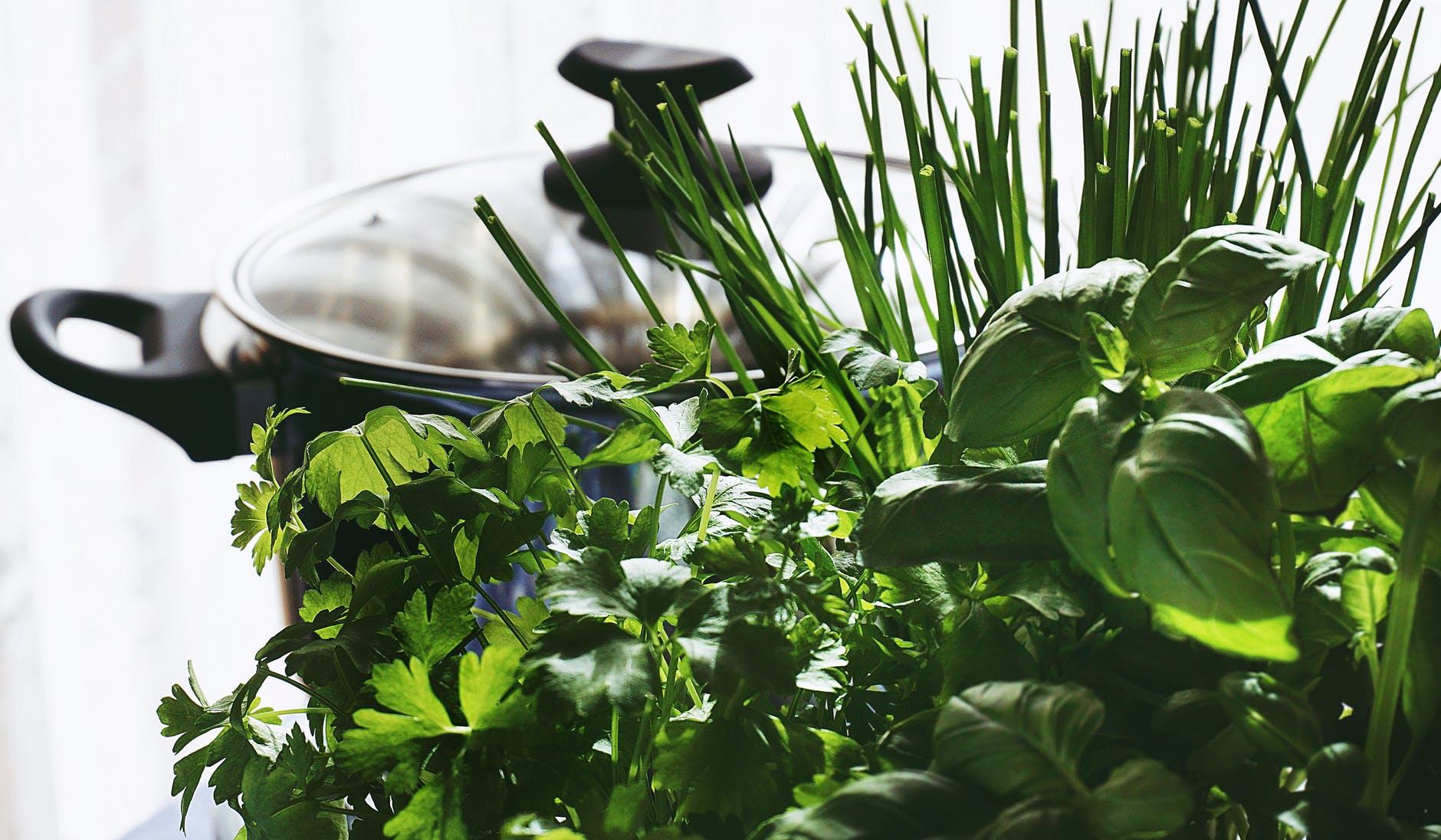 Planta care vindecă zeci de afecțiuni. Indiciu? Este cea mai aromată, versatilă și apreciată din bucătăria ta