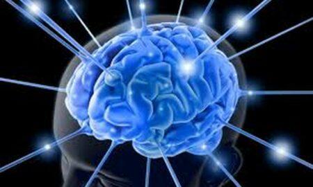Cum sa ai grija de creierul tau pentru a avea o minte brici! Recomandări de la un expert