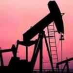 Care sunt consecințele volatilității prețului petrolului asupra producătorilor din Orientul Mijlociu și din Africa