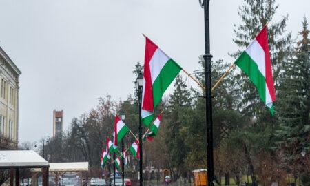 UDMR calcă pe gheață subțire în Covasna. Radicalii maghiari ignoră legile țării în plină pandemie