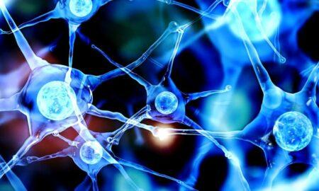 De ce se blochează creierul? Explicațiile vin de la reputatului neurochirurg Alexandru Ciurea