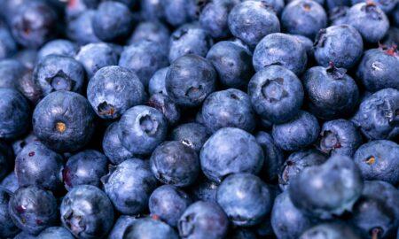 Ce se întâmplă în corpul tău dacă mănânci AFINE în fiecare zi! Puterea antioxidantă este remarcabilă