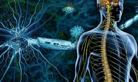 O boală cruntă face victime la fiecare cinci minute. Prof. dr. Vlad Ciurea intervine de urgență