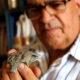 Chile.Fosile cu o vechime de 150 de milioane de ani ale strămoșului crocodilului modern