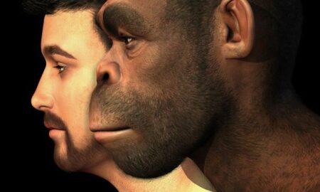 """Au fost descoperite noi indicii despre genele """"moștenite"""" de la neandertalieni? Expert: """"Boli de sânge, tumori și boli neurologice"""""""