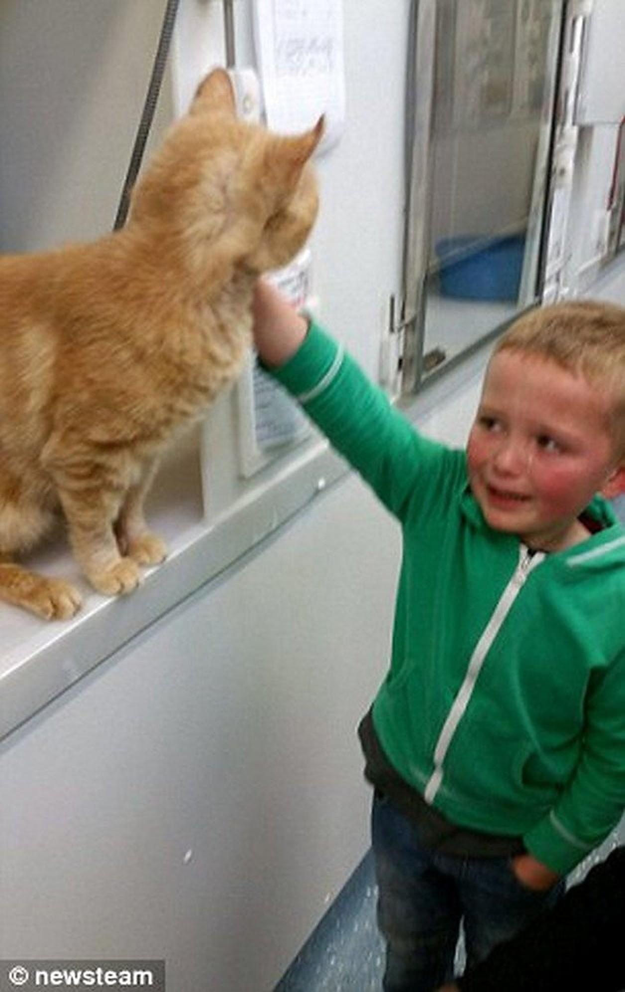Un băiat a mers într-un adăpost să adopte un nou animal de companie, însă avea să aibă parte de o adevărată surpriză!