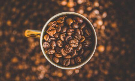 Vestea momentului pentru iubitorii de cafea! Culturile de cafea, în pericol! Ce alternativă benefică s-a găsit