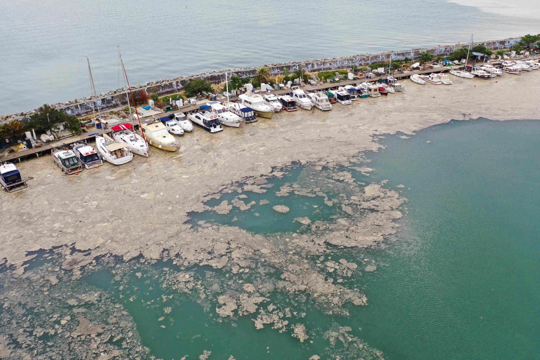 Dezastru ecologic în Marea Marmara. Sunt amenințate Marea Neagră și Marea Egee