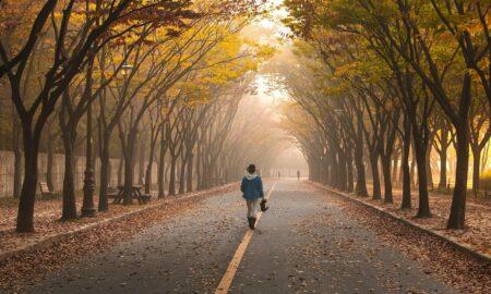 Ce se întâmplă dacă mergi 15 minute pe jos, zilnic. Beneficii majore pentru sănătate