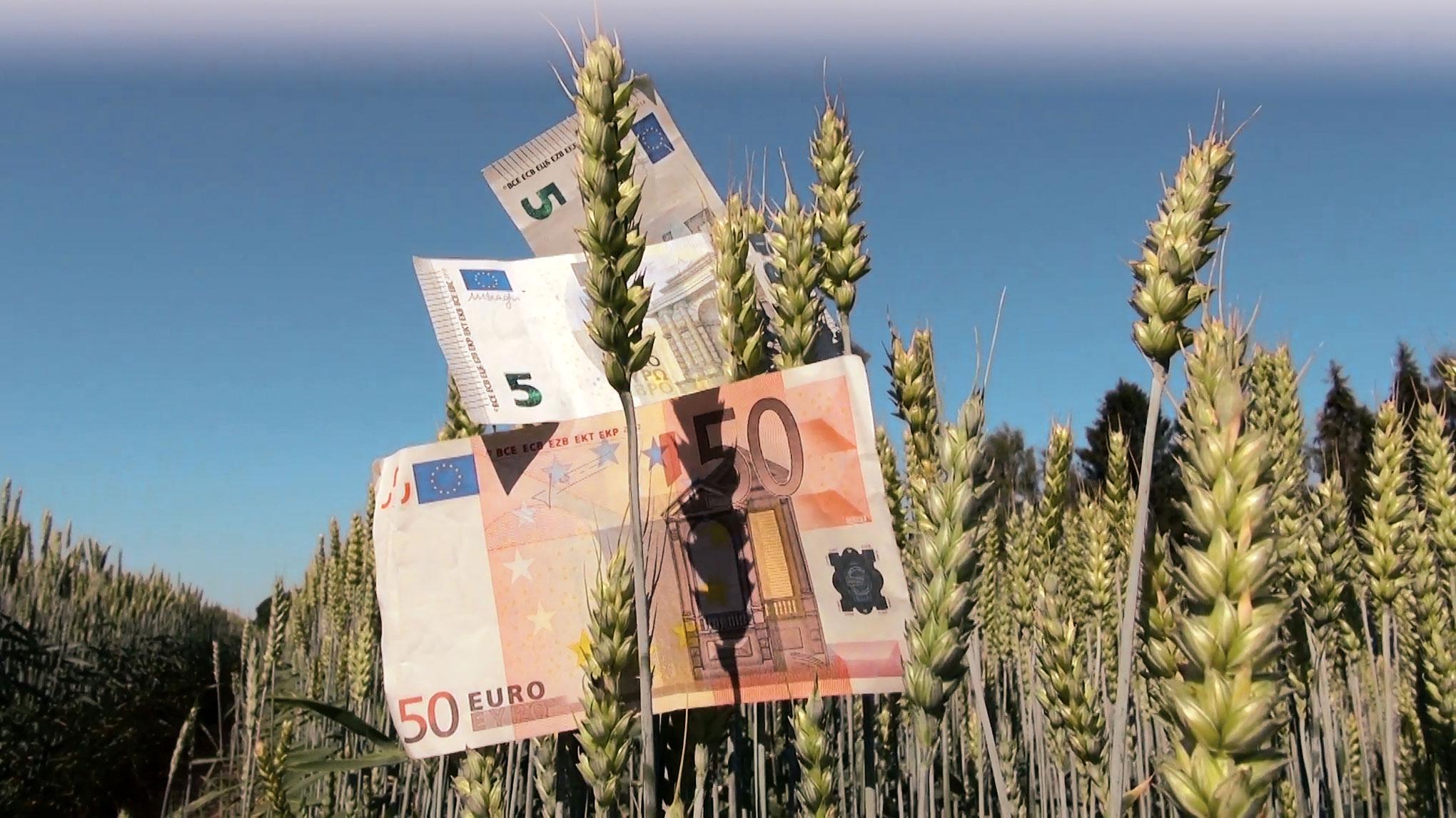 AFIR. Măsuri de susținere a solicitanților și beneficiarilor PNDR în relația cu instituțiile financiare