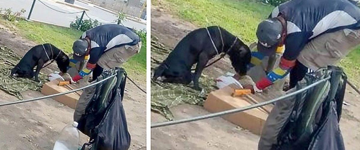 Indiferent de problemele cu care se confruntă zi de zi, un bărbat fără adăpost împarte totul cu patrupedul său loial!